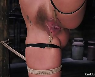 Busty blond fingered in hogtie